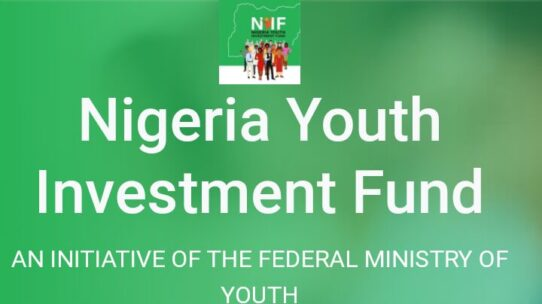 Nigeria Youth Investment Fund Portal • [ How to Apply Online • nyif.nmfb.com.ng ]