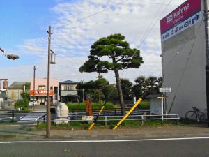 江尻 細井の松原