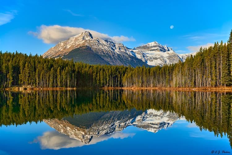 Banff Page