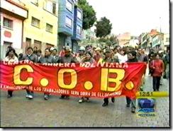 COBLLUVIA7