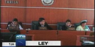 ALD Tarija prepara una Ley de Defensa Legal de Margarita