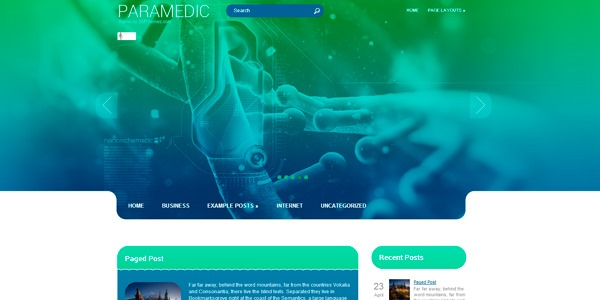 Paramedic: tema de WordPress