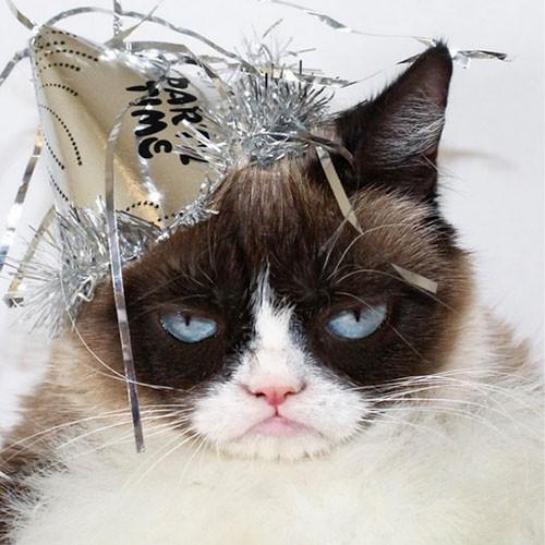 10. Grumpy Cat