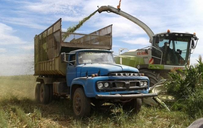 CAO: productores no esperan que el Gobierno les regale dinero a pesar del 80% de pérdidas