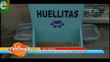 Asociación 'Huellitas' instala comederos para canes callejeros en La Paz