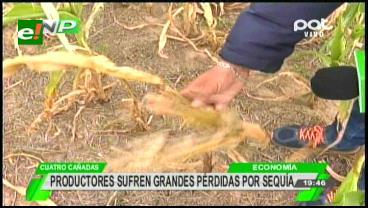 Santa Cruz: Rendimientos de 6 cultivos afectados por la sequía