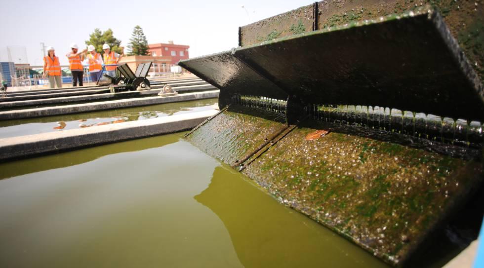 El agua residual es sometida a un pretratamiento para retirar papeles o plásticos.