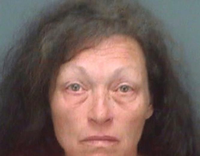 Kathleen Marie Steele fue detenida por su actuar irresponsable.