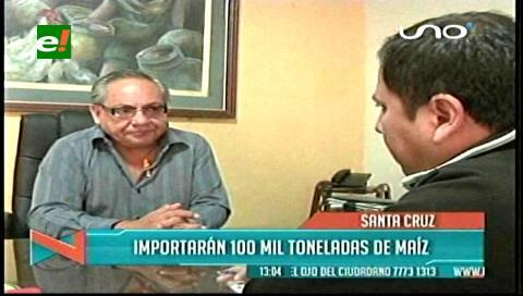Avicultores importarán 100 mil toneladas de maíz de Argentina