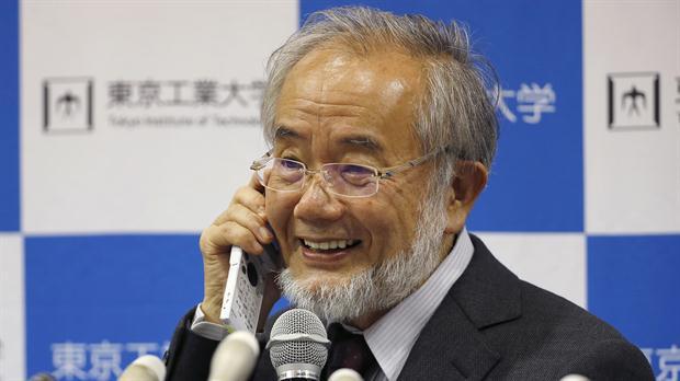 ¿Qué dijo Ohsumi al enterarse que era el nuevo Nobel de Medicina?