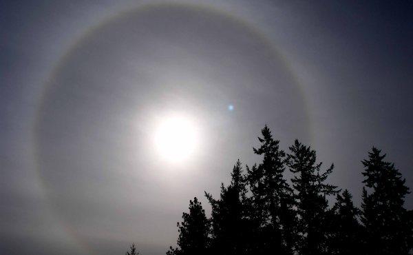 ¿Por qué ocurre un halo solar?