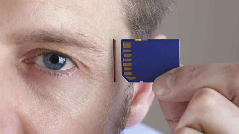 Foto: ¿Cómo debemos educar a la inteligencia humana para que aproveche la inteligencia artificial? (iStock)