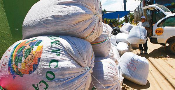 La coca boliviana se convierte en noticia más allá de las fronteras. La atención está ahora en Argentina