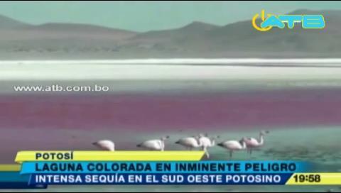 La Laguna Colorada podría desaparecer