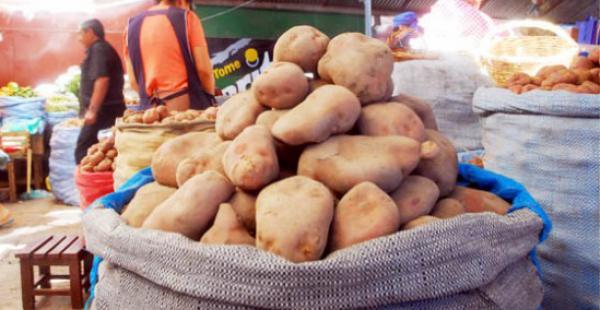 La papa es el alimento de mayor consumo en el país, según datos del INE