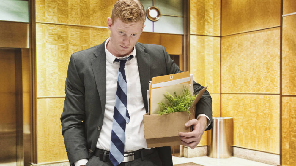 Foto: Bajo ningún concepto se permiten plantas en la oficina. (iStock)