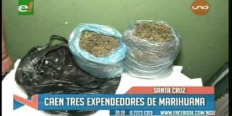 Caen tres expendedores de marihuana en el Plan Tres Mil