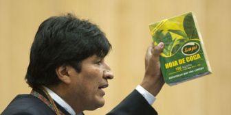 """El cuento de la """"industrialización"""" de la coca"""