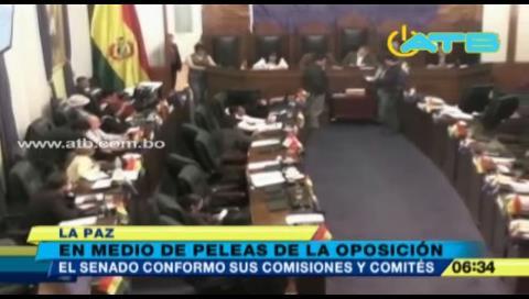 Senado conformó comisiones y comités