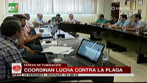 Sectores se reunieron para coordinar los trabajos de fumigación contra la plaga de langostas