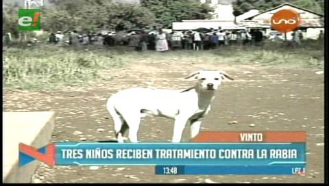 Cochabamba: Perro con rabia muerde a cuatro niños en Vinto