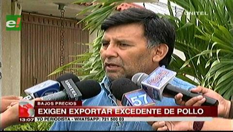 Avicultores cruceños en emergencia, piden exportar sus excedentes