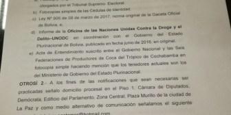 Cocaleros de Yungas presentan recurso de inconstitucionalidad contra Ley de Coca