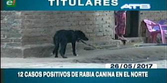 Video titulares de noticias de TV – Bolivia, mediodía del viernes 26 de mayo de 2017