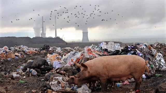 Las 100 empresas que mayor cantidad de gases de efecto invernadero emiten