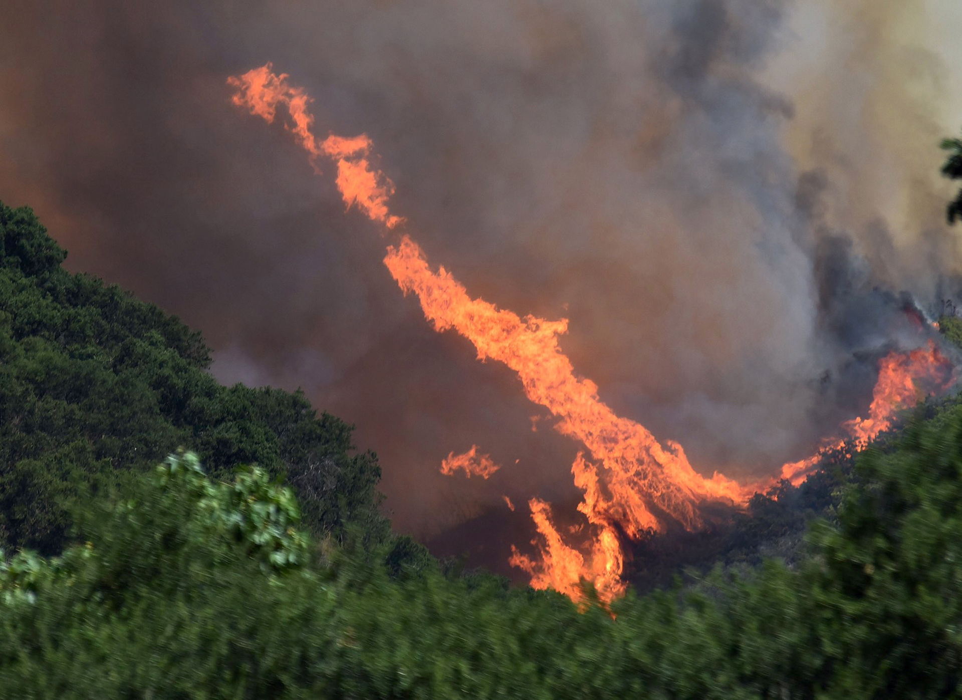 Son más de una docena los incendios forestales que se han desatado en California