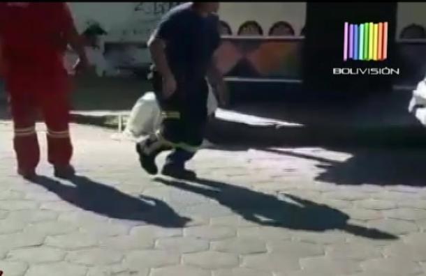 Hombre fue atacado por abejas en La Mansión