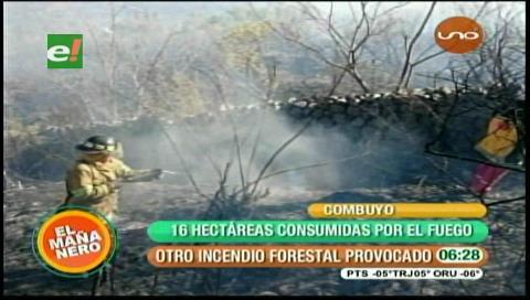 Incendio en Pairumani afecta unas 10 has de vegetación y sembradíos de maíz