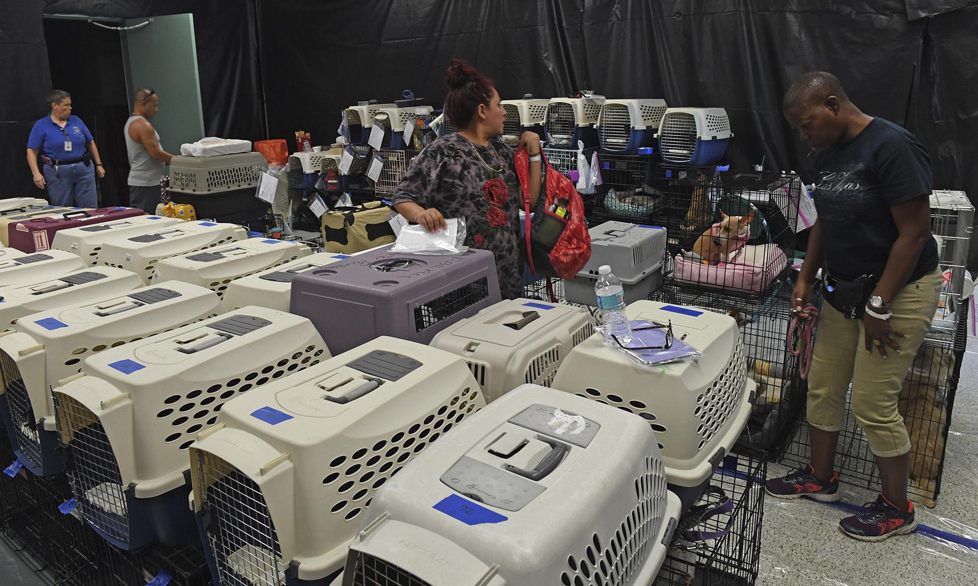 Las personas buscan refugio de Irma con sus mascotas en el West Boynton Park and Recreation Center en preparación para el huracán Irma en Boynton, Beach, Florida. (AP)