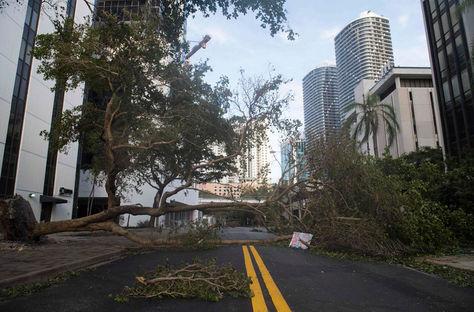 Florida. Calles intransitables tras el paso del huracán Irma. Foto: AFP