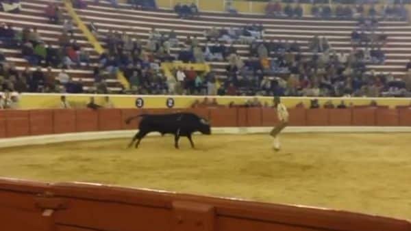 Torero fallece tras una cornada fatal