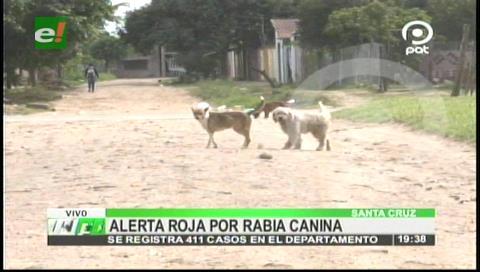 Alerta roja en Santa Cruz por la rabia canina