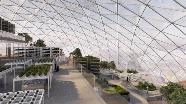 Así serán los invernaderos que se diseñarán en Dubái (FOTO: Dubái)