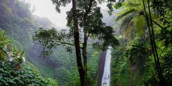 Descubren una 'ciudad perdida' del Imperio inca en medio de la jungla peruana (fotos, video)