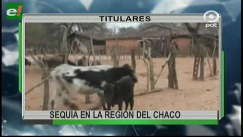Video titulares de noticias de TV – Bolivia, noche del lunes 9 de octubre de 2017