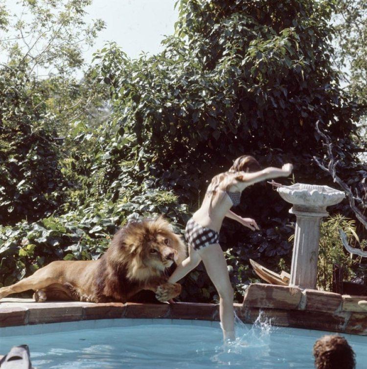 Melanie en la piscina con el león.