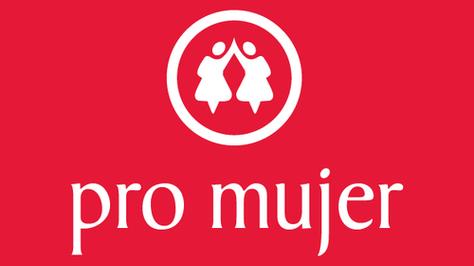 Logotipo de la Institución Financiera de Desarrollo (IDF) Fundación Pro Mujer.