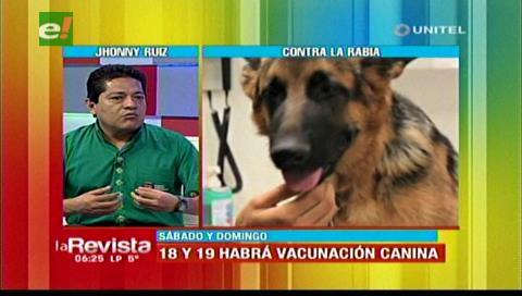 Zoonisis: Mascotas vacunadas o no deben recibir la dosis en la campaña de vacunación