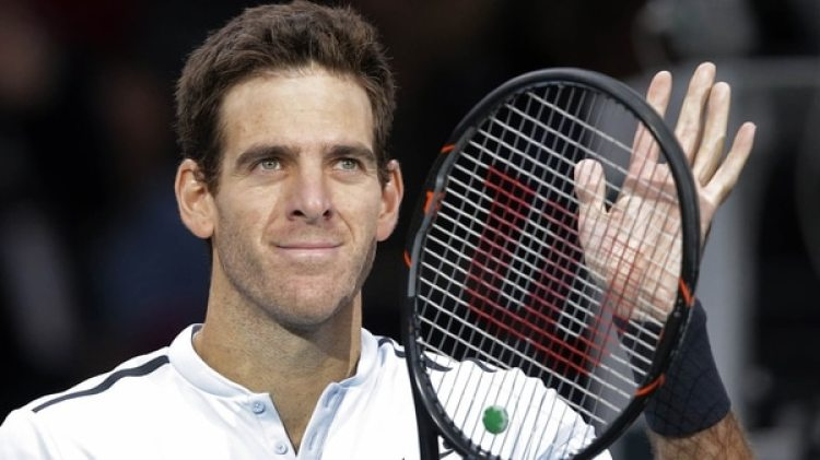 Juan Martín del Potro (AP Photo/Michel Euler)