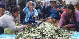 Evo Morales reivindica el valor cultural de la coca y asegura que ahora es respetada