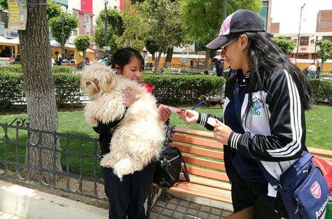 Segundo día de la jornada de vacunación contra la rabia canina en Oruro.