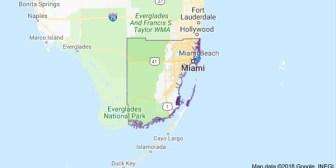 Miami quedó entre las 20 finalistas para la nueva sede de Amazon