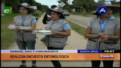 Santa Cruz: Comienza la encuesta entomológica