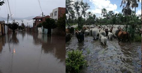 La situación de las inundaciones en Vinto (Cochabamba), Loreto (Beni), Villamontes (Tarija) y Tupiza (Potosí). Fotos: Fernando Cartagena, Centro de Operaciónes de Emergencia del Beni, Ibieta y Gonzalo Barrientos