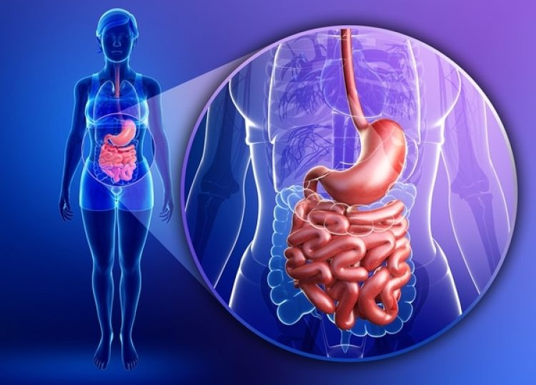 El procedimiento es el más elegido a la hora de analizar el tracto digestivo (Getty)