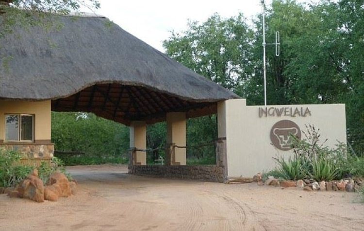 El ingreso a la Reserva Privada Ingwelala, donde sucedió el incidente